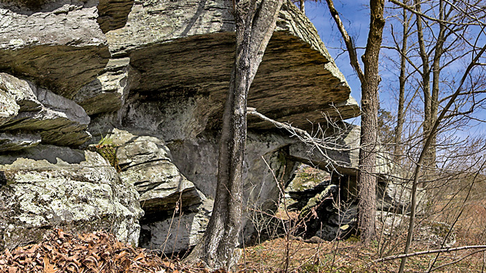 Bevans Rock Shelter