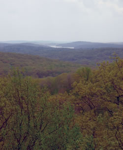 Headley Overlook