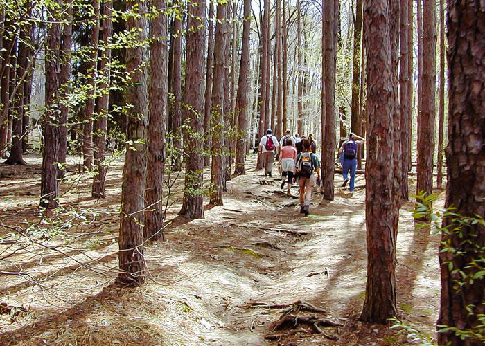 Hiking clubs in nj